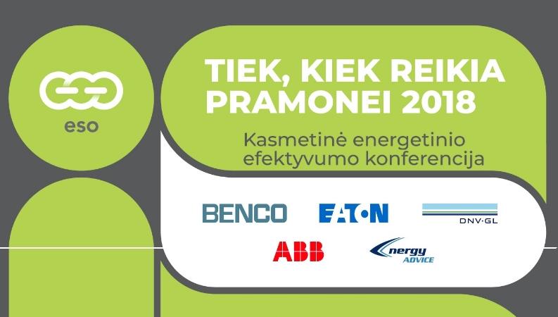 TIEK, KIEK REIKIA PRAMONEI 2018. Elektros energija brangs